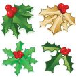 holly berries vector image