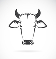 image of an cow head vector image