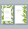 Green tea banners vector image