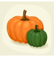 Stylized of fresh ripe pumpkins vector image