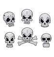 Cartoon skulls set vector image vector image