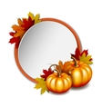 Thanksgiving card with pumpkins vector image vector image