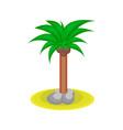 cartoon palm tree with kakos vector image