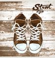 sport shoe graphic design of vector image