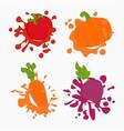 vegetebles juice drops vector image
