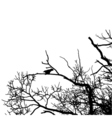 black raven silhouette of a bare tree vector image