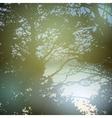 summer design forest nature green wood sunlight vector image