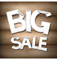 Big Sale Sticker - Label on Wooden Background vector image vector image