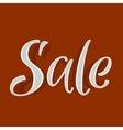 Sale volume discounts text vector image