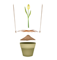 Terracotta Flower Pots with Soil and Yellow Tulip vector image