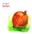 Background with watercolor onion vector image