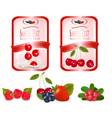 Labels with cherries vector image