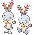 Bunny rabbit cartoon vector image