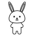 animal rabbit vector image