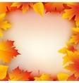 Autumn leaves plant frame Mapple leaf frame vector image