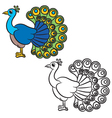 peacock bird on a white background vector image