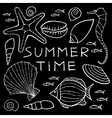 Set of White Summer Sketches Hand Drawn in Pencil vector image