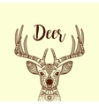 Brown horned deer head with ornament vector image