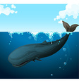 Whale swimming under the sea vector image