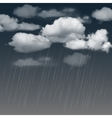Rainclouds and rain in the dark sky vector image vector image
