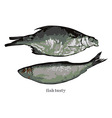 two cooked fish vector image