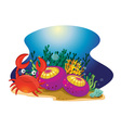 Crab and reef vector image
