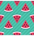 Cute seamless watermelon pattern vector image