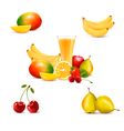 Group of summer and tropical fruit vector image
