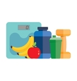 fitness tools sports nutrition vector image