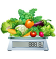 Fresh vegetables on the scales vector image