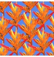 Heliconia colorful seamless flower on a blue vector image