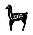 Lama with the inscription llama silhouette logo vector image