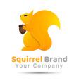 squirrel Volume Logo Colorful 3d Design Corporate vector image