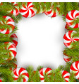 christmas background with lollipop and pine tree vector image
