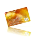 Credit Card Icon Isolated on White vector image