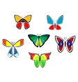Colorful butterfly icons and tattoos vector image