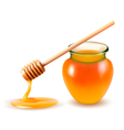 Jar of honey and a dipstick vector image vector image