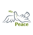 Flying dove with olive branch vector image