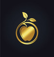 organic fruit apple nature gold logo vector image
