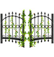 Fence design with vine and flower vector image