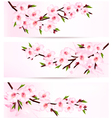 Three sakura branch banners vector image