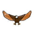hawk eagle symbol vector image