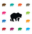 isolated polar icon bear element can be vector image