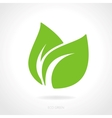 Eco green leaf concept vector image