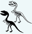 Tyrannosaurus skeleton vector image vector image