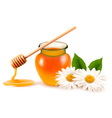 Jar of honey and a dipstick with flower vector image