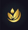 organic green leaf bio gold logo vector image