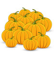 pile of orange pumpkins on a white background vector image