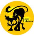 cat halloween vector image vector image