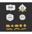 hand drawn hipster vintage retro labels and logo vector image